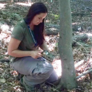 Dr. Katherine Edwards setting up a game camera to conduct a wildlife survey in county parks. Photo provided by Katherine Edwards.