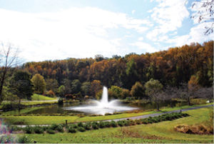 fountain meadowlark