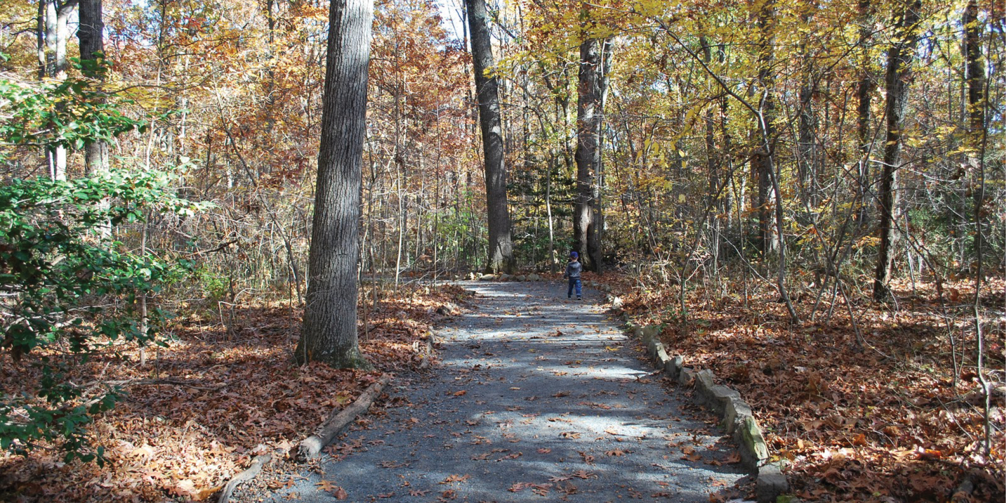 Walker's Nature Center trail