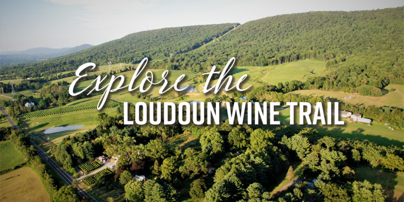 Explore the Loudoun Wine Trail
