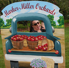 apple_picking_fun